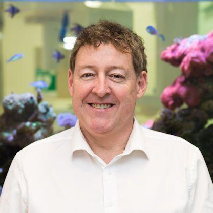 Dr. David Gallagher